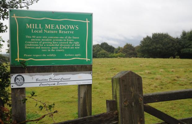 Mill Meadows has been the victim of 'nighthawking'