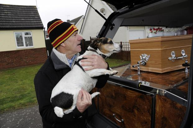 Basildon Recorder: Dog's goodbye to her master - Canvey rock guitarist Dave Higgs